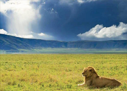 Tanzánia társkeresőegyszerű címsor társkereső profilhoz